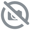 Maillot match ALHENA Couleur : Blanc Royal